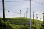 Rotoren zum Entwässern der Teefelder
